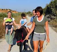 Ponyreiten bei Alfa-Horse auf der Insel Kos